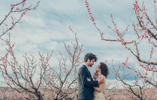 对婚姻失望看透的句子,看透婚姻的句子